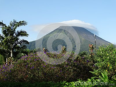 Mount Arenal in Costa Rica. Picturesque landscape, clouds cover the top of the mountain, around flowers, palm trees.