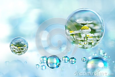 Every raindrop has a spring within