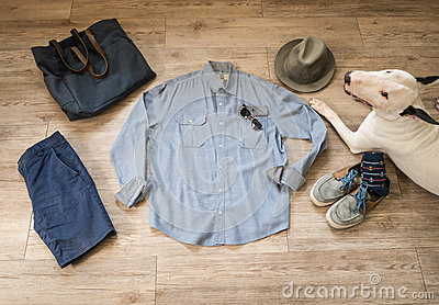 Fashion vintage male outfit, cloth and accessories and bullterri