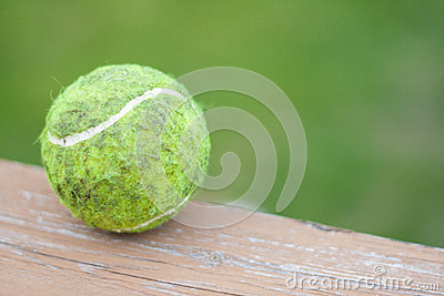 Dirty Tennis Ball