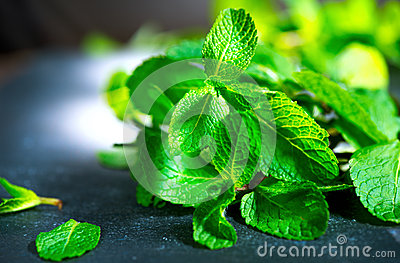 Fresh mint on a table