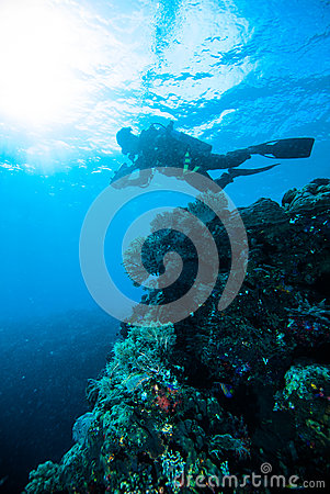 Sun shine scuba diving diver kapoposang sulawesi indonesia underwater