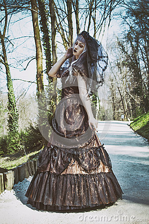 Gothic bride with veil