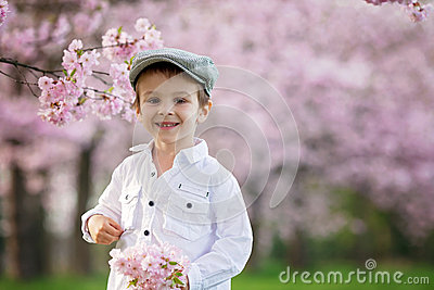 Portrait of adorable little boy in a cherry blossom tree garden,