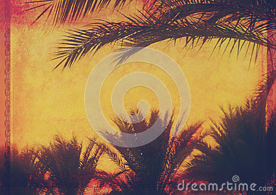 Grunge tropical background with coconut palm trees.