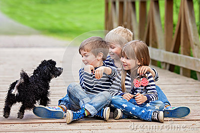 Three beautiful adorable kids, siblings, playing with cute little dog in the park