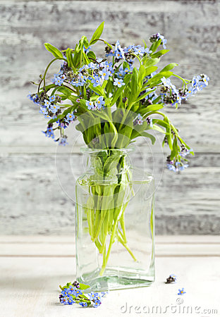 Bouquet of blue wild forget-me-not flowers.
