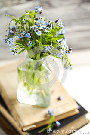 Bouquet of blue wild forget-me-not flowers. Selective focus. Sha