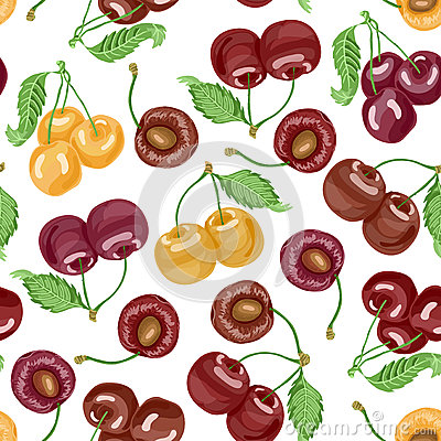 Seamless pattern with cherries on white background