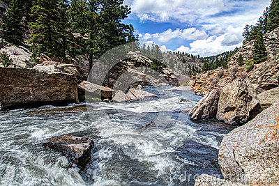 Rushing stream river water through Eleven Mile Canyon Colorado