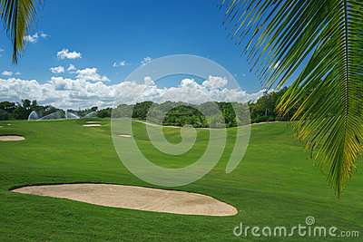 Golf course. Beautiful landscape of a golf court with palm trees