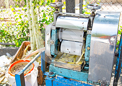 Machine for make a fresh cane juice with sugar cane press rolle