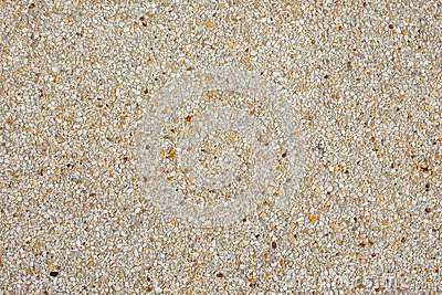 Surface Of Terrazzo Floor Stone Wash
