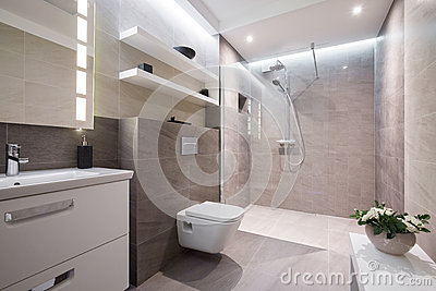 Exclusive modern bathroom