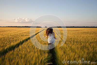 Woman run  in yellow wheat field