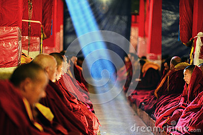 Monks are studying Buddhist scriptures