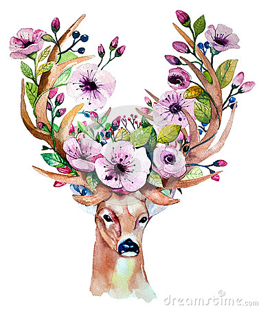 Vector watercolor hand drawn floral set with deer
