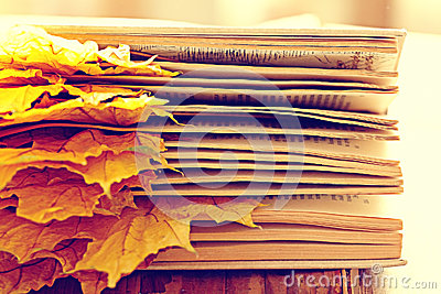 Book pages yellow leaves
