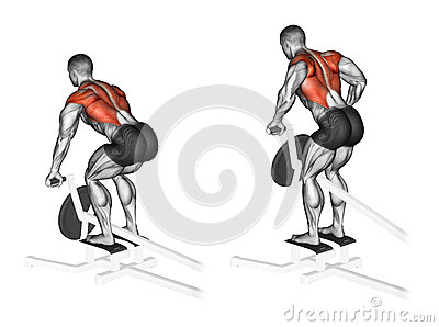 Exercising. Thrust T-shaped on the back muscles in the slope
