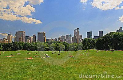 The Great Lawn in Central Park