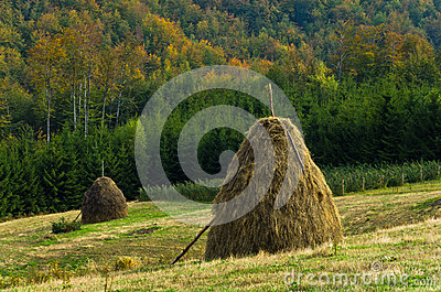 Viewpoint on a landscape of mount Bobija, hills, haystacks, meadows and colorful trees