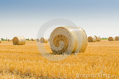 Feld with bale of straw