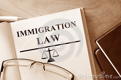 Book with words Immigration Law.
