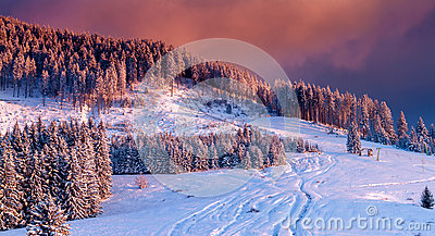 Bucegi mountains,Romania.Warm and colorful sunset over snow covered trees in an idyllic mountain landscape in winter