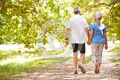 Senior couple walking together in the countryside, back view