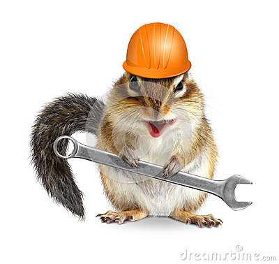Funny handyman chipmunk worker with helmet and wrench isolated o