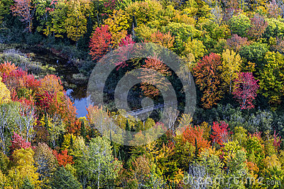Fall colors at Porcupine Mountains