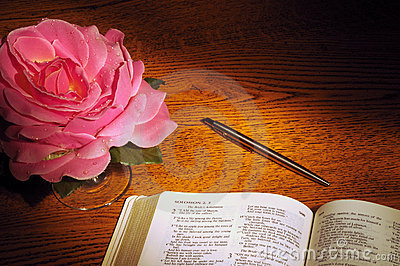 Bible, pen, & rose