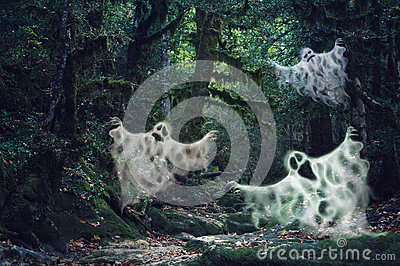 Magic dim light haunted forest with three scary ghosts