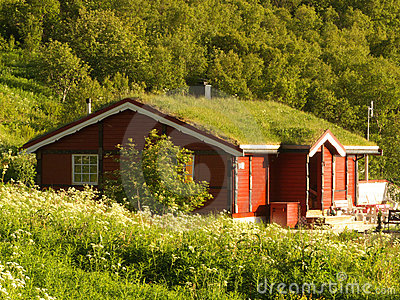 Lofoten's lodge with grass on the roof