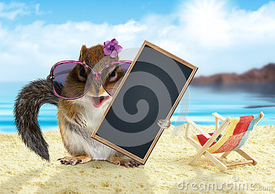 Funny chipmunk on summer vacation holidays hold empty blank banner, sitting on beach