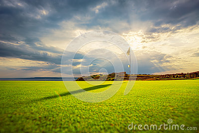 Luxury field in a golf club course at sunset