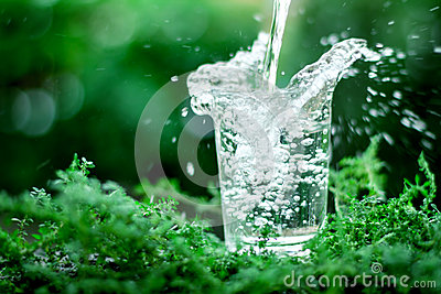 A glass of cool fresh water on natural green background
