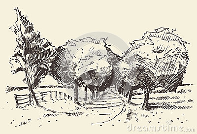 Hand drawn landscape trees meadow illustration
