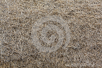 Background roof of straw