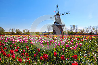 Wooden Windmill in Holland Michigan