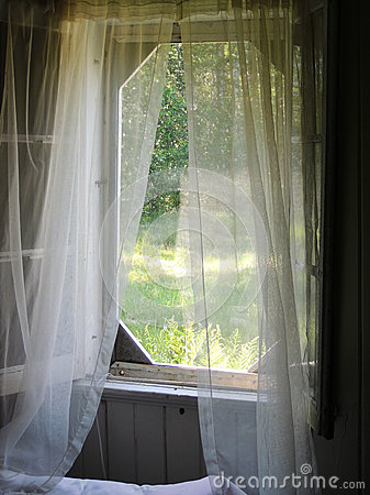 Curtains in the breeze