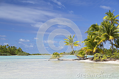 Lagoon at Les Sables Roses (Pink Sands), Tetamanu, Fakarava, Tuamotu Islands, French Polynesia