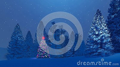 Decorated christmas tree among snowy fir forest at night
