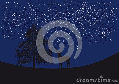 Deer under the starry sky