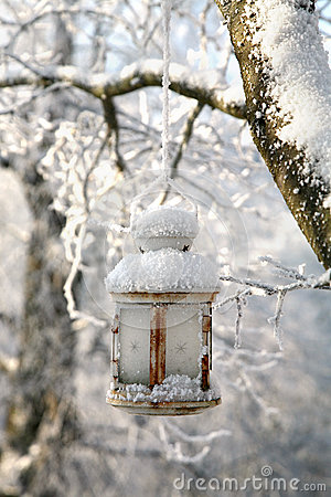 Christmas decoration with lantern, snow and fir tree branch.