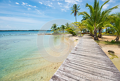 Caribbean beach with palm trees on Bocas del Toro islands in Panama