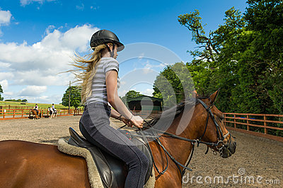 Horse riding at paddock