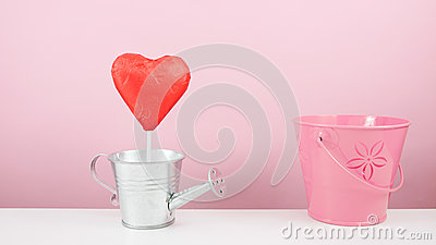 The red foiled chocolate heart stick with small silver watering can and small pink bucket