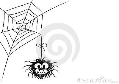 Funny spider bw