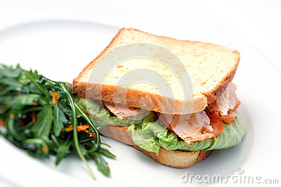 Toast sandwich with chicken, tomatoes, lettuce and salad on white plate, isolated on white background